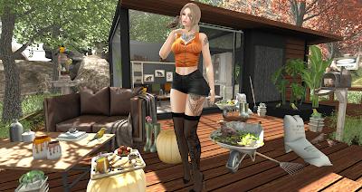 snapshot_2566a