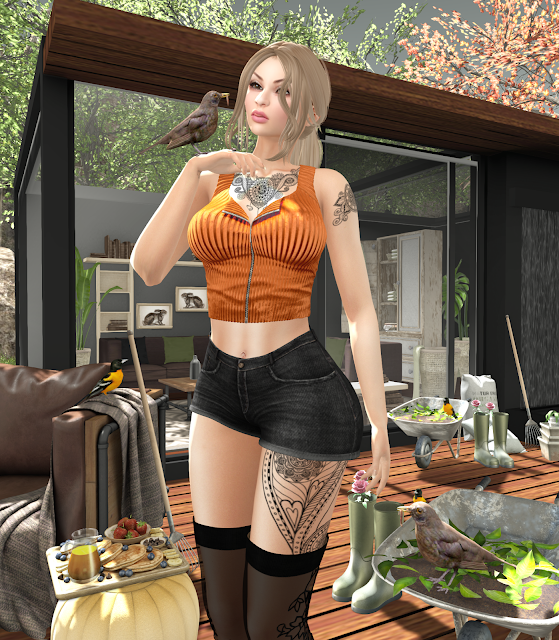 snapshot_2571a