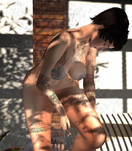 snapshot_815ab