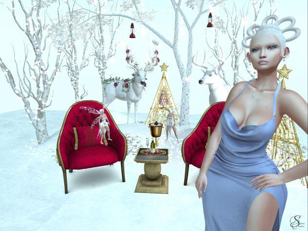 2239-sense-snow_0031-632x474-1-1